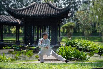 Asiatischer Mann bei Tai Chi Übungen im Park